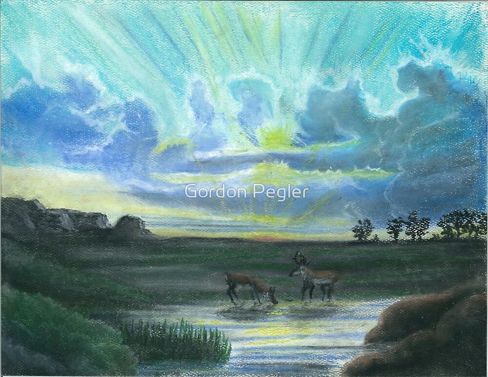 Colorado antelope at dawn by Gordon Pegler