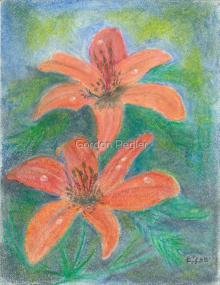 Woodlilies - oil pastels   by Gordon Pegler