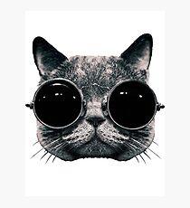 Meow Me-Yeahhhh... Photographic Print