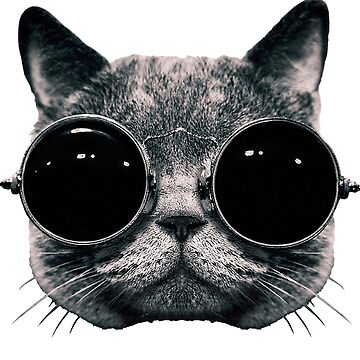 Meow Me-Yeahhhh... by TEAMG33K