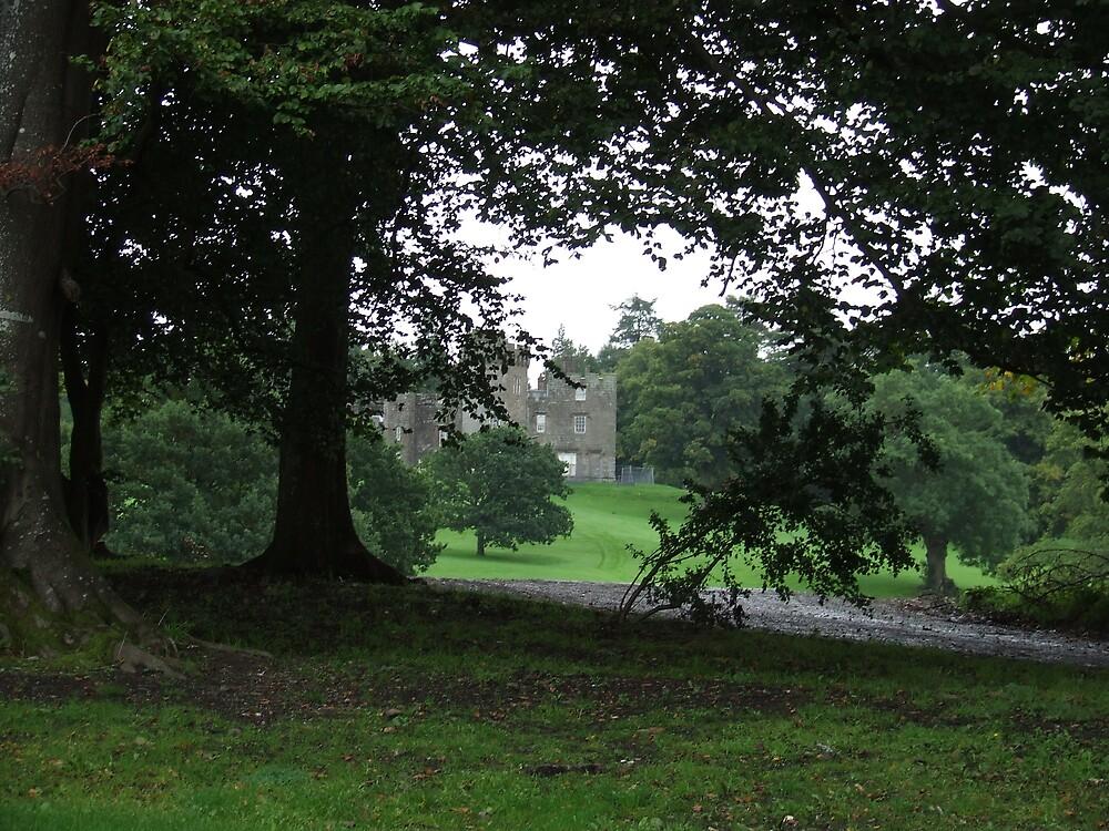 Balloch Castle through the tree's by David Fulton