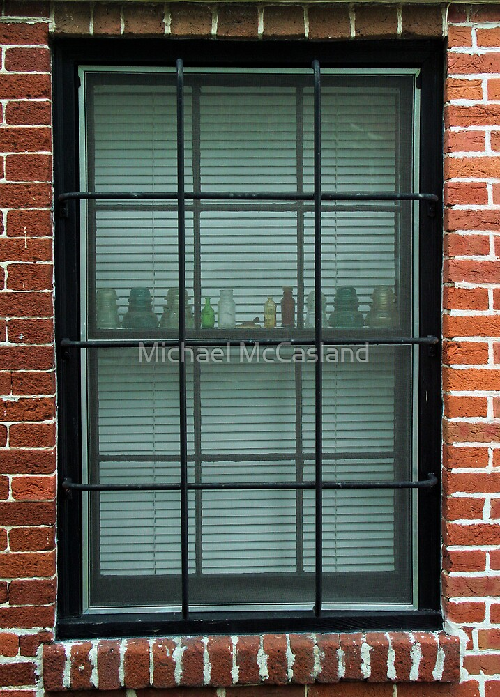 Through the Window by Michael McCasland