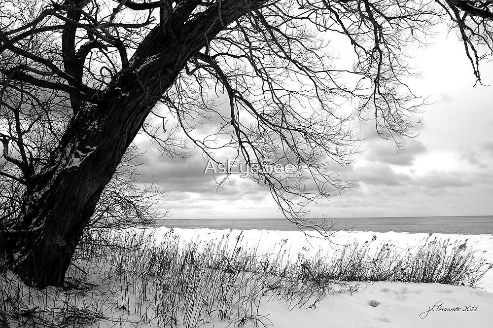 An Erie Calm by AsEyeSee
