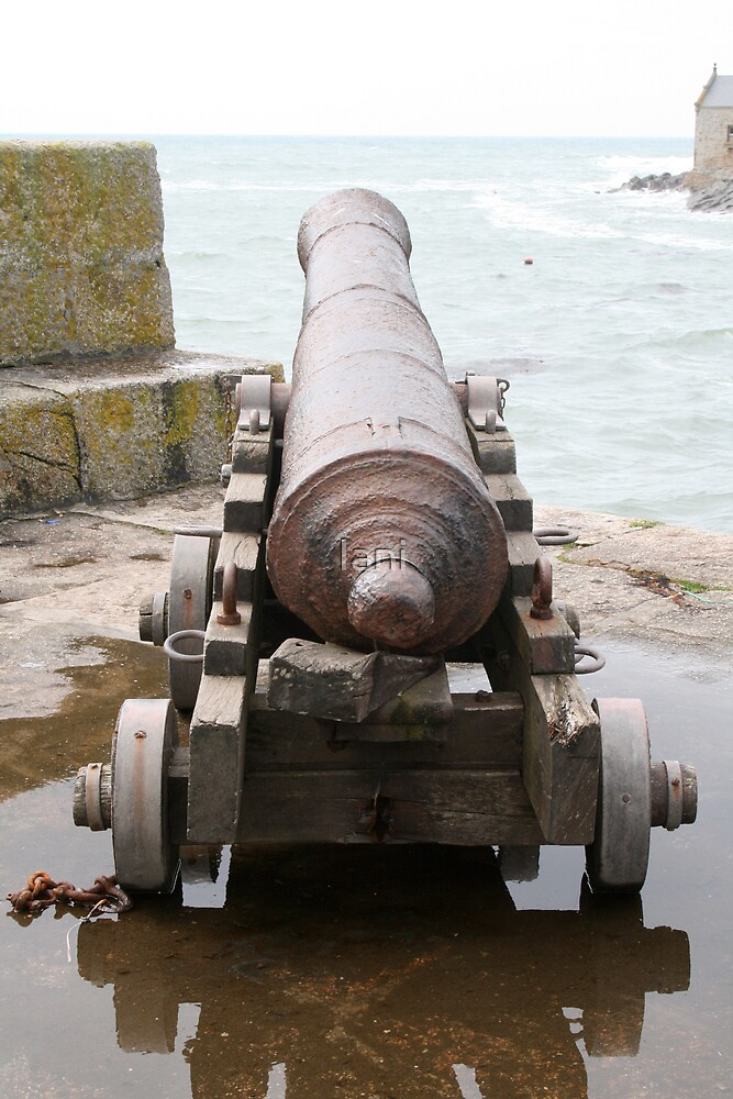 Looking Down a Cannon by Iani