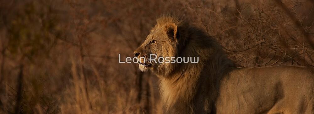 Taking Pride by Leon Rossouw
