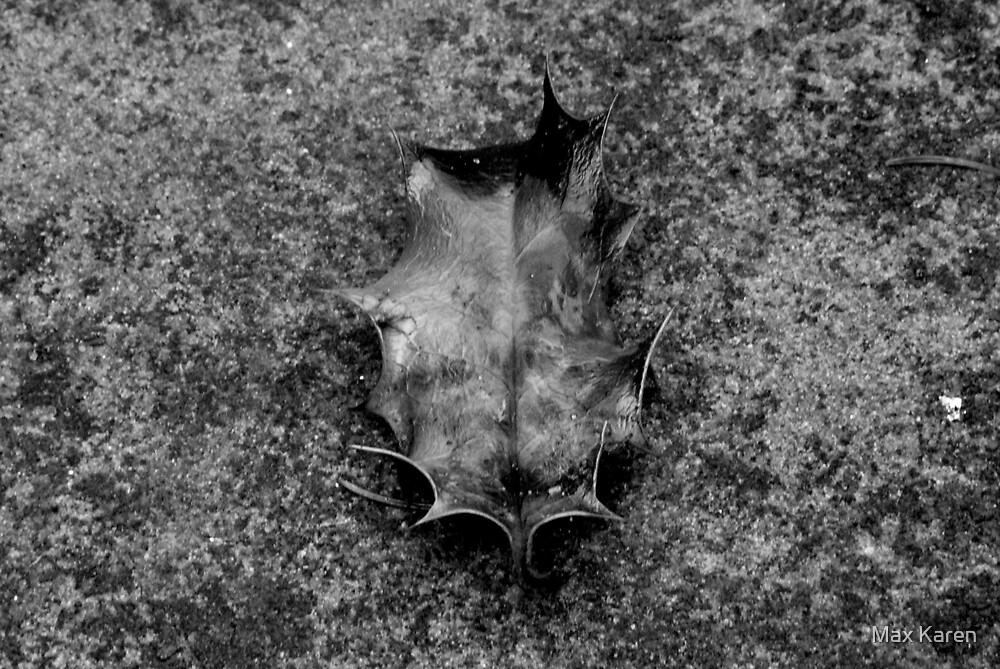 Fallen by Max Karen