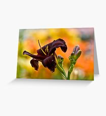 """""""Root Beer"""" Daylily Greeting Card"""