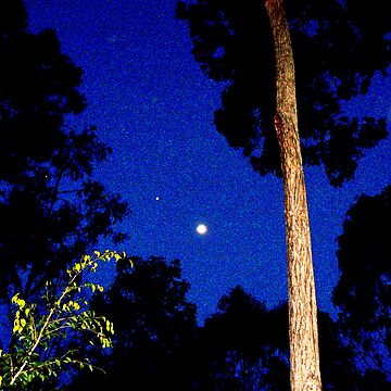 Moon On a Thursday Night in September 2008 by ginnymac