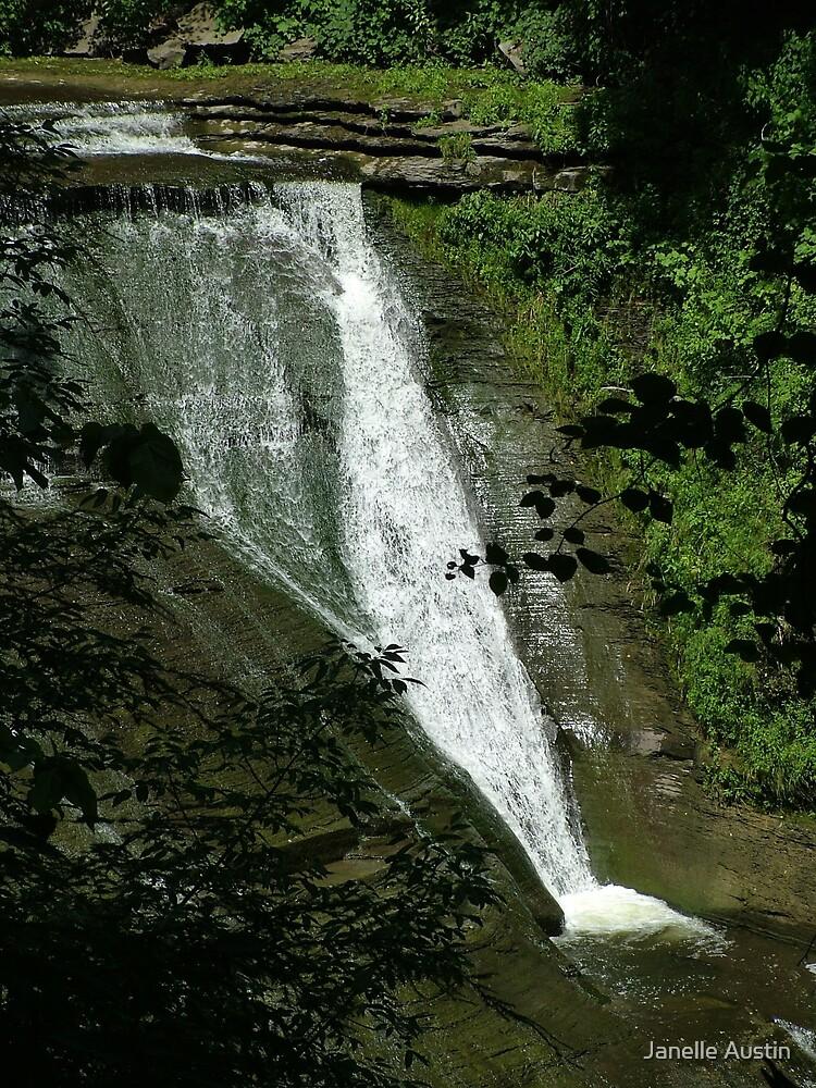 Hidden Waterfall by Janelle Austin