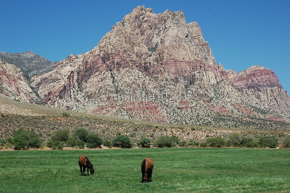 Hidden Springs Nevada by bailey4142