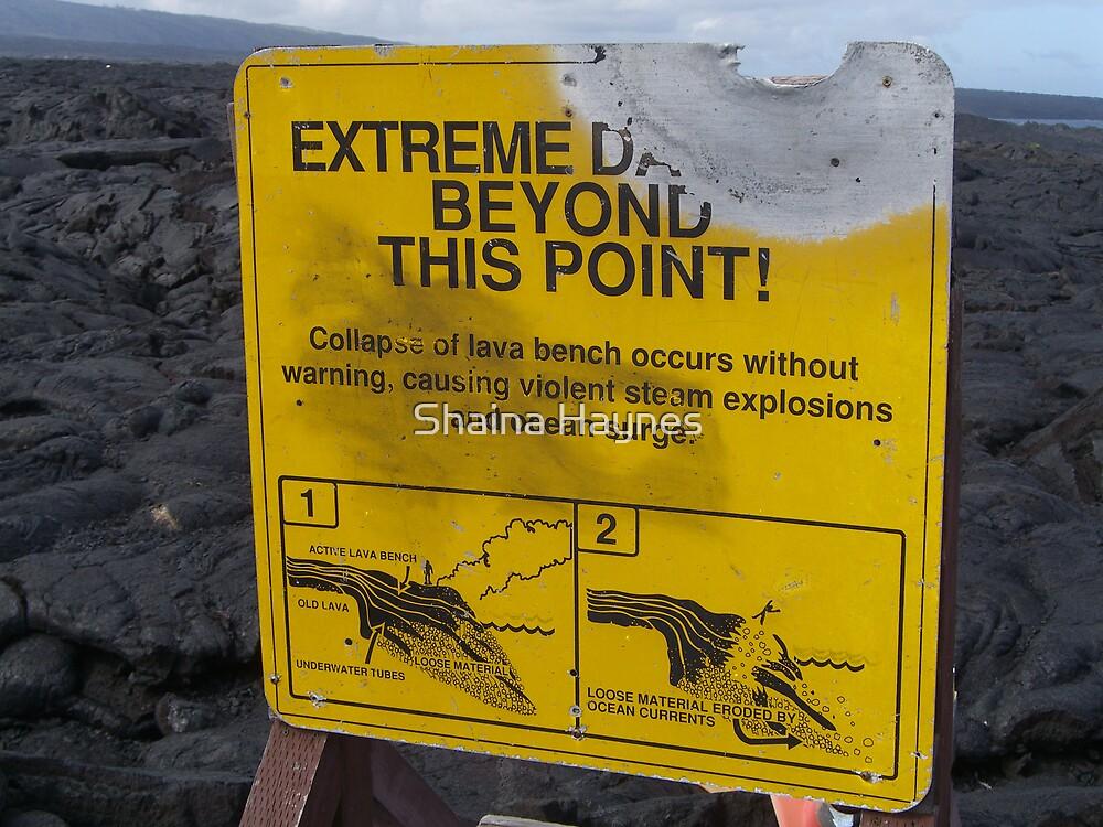Danger Danger by Shaina Haynes