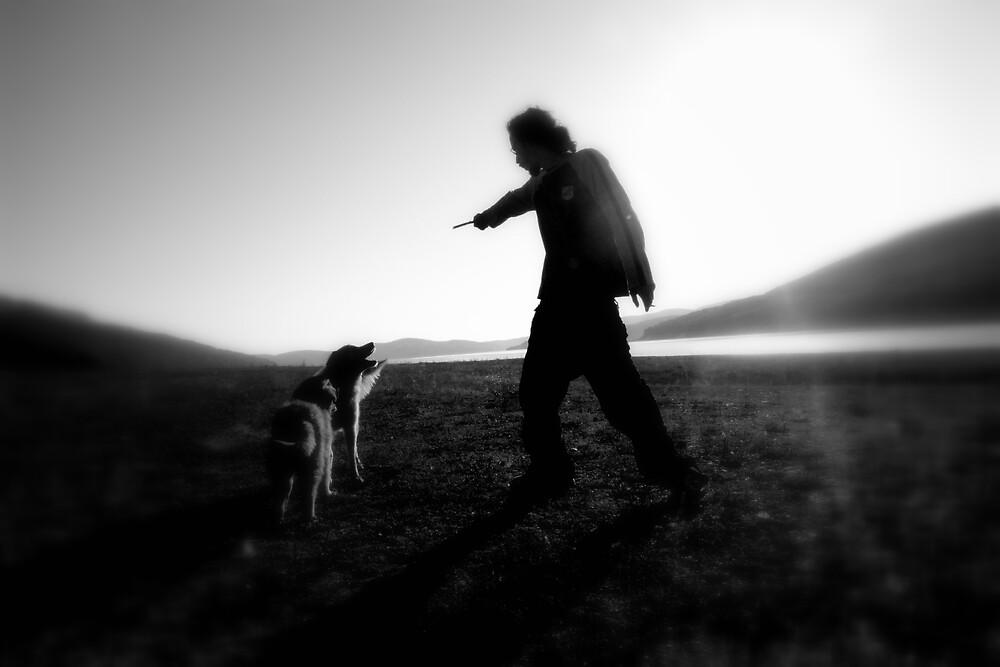 the dog and the horizon by Ivana Ivanova Milcinoska