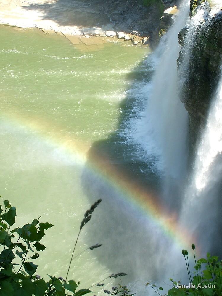 Waterfall Rainbow by Janelle Austin