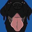 Happy Black Lab by rmcbuckeye