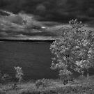Wind by Herb Spickard