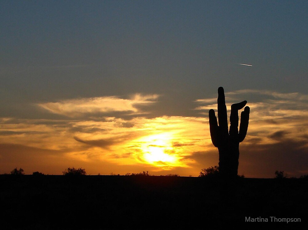 Saguaro at Sunset by Martina Thompson