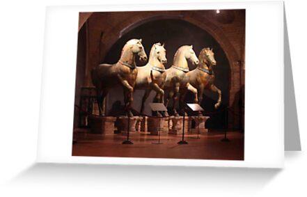 Cavalli by phil decocco