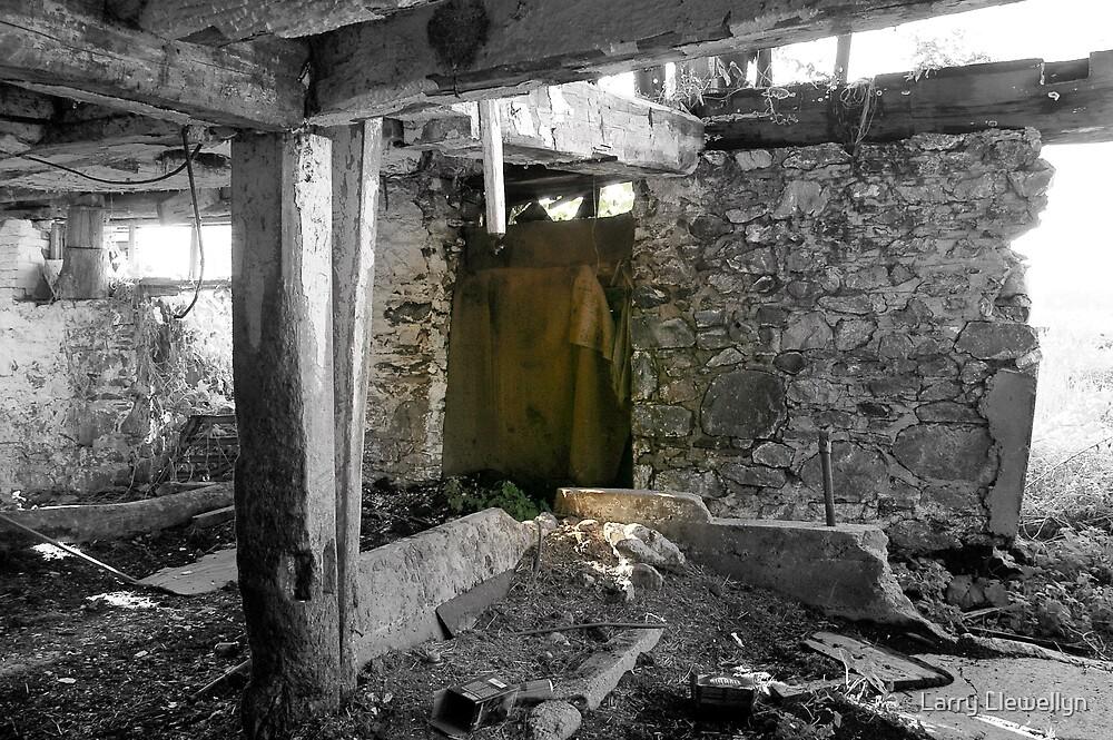 The Door by Larry Llewellyn