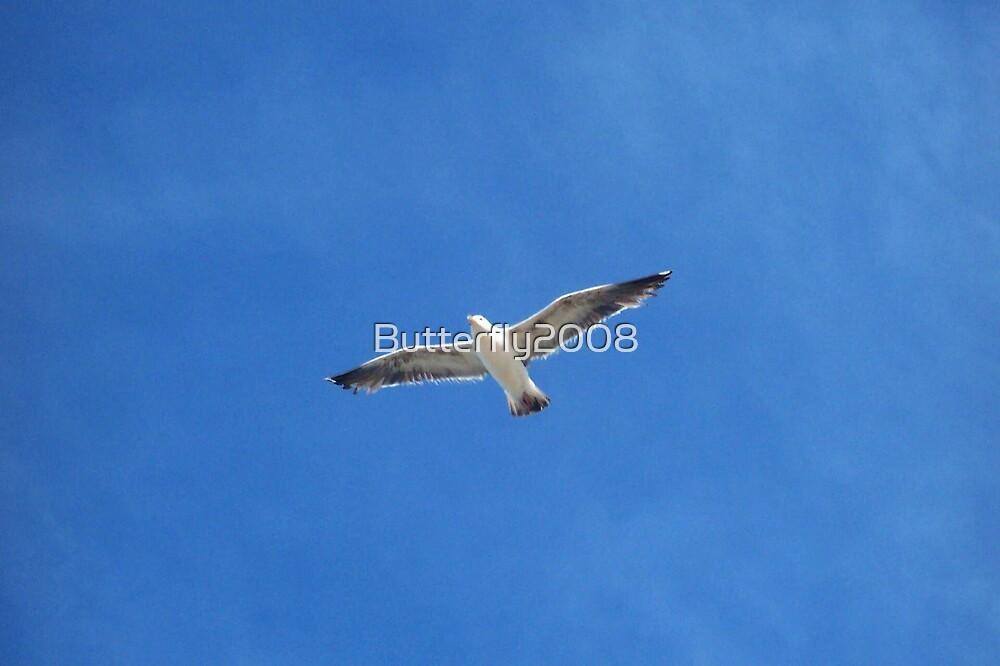Take Flight by Butterfly2008