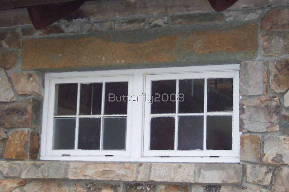 Twin Windows by Butterfly2008