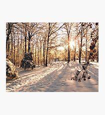 GOLDEN WINTER MORN 1 Photographic Print