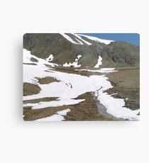 Hiking in Switzerland Metal Print