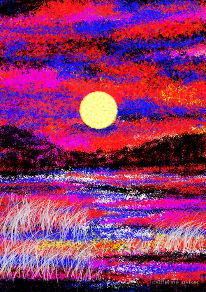 July Sunset by catherine walker