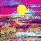 December Sunset by catherine walker