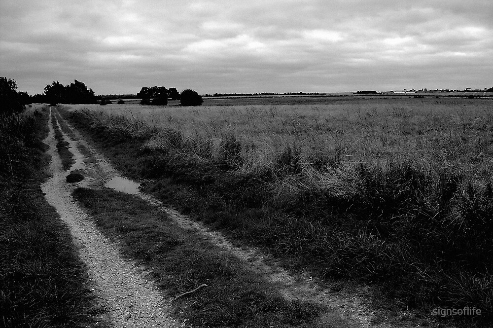 Field Path by signsoflife