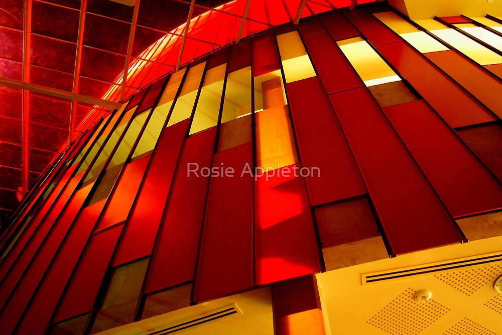 Red and Yellow lines by Rosie Appleton