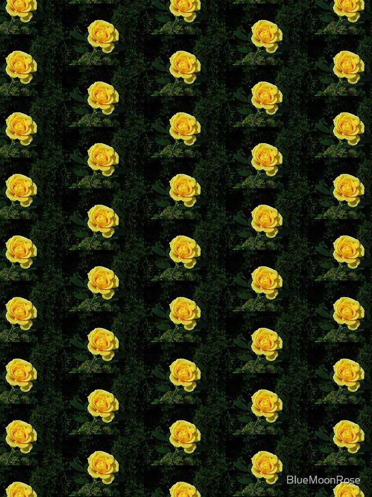 Herbst Rose von BlueMoonRose