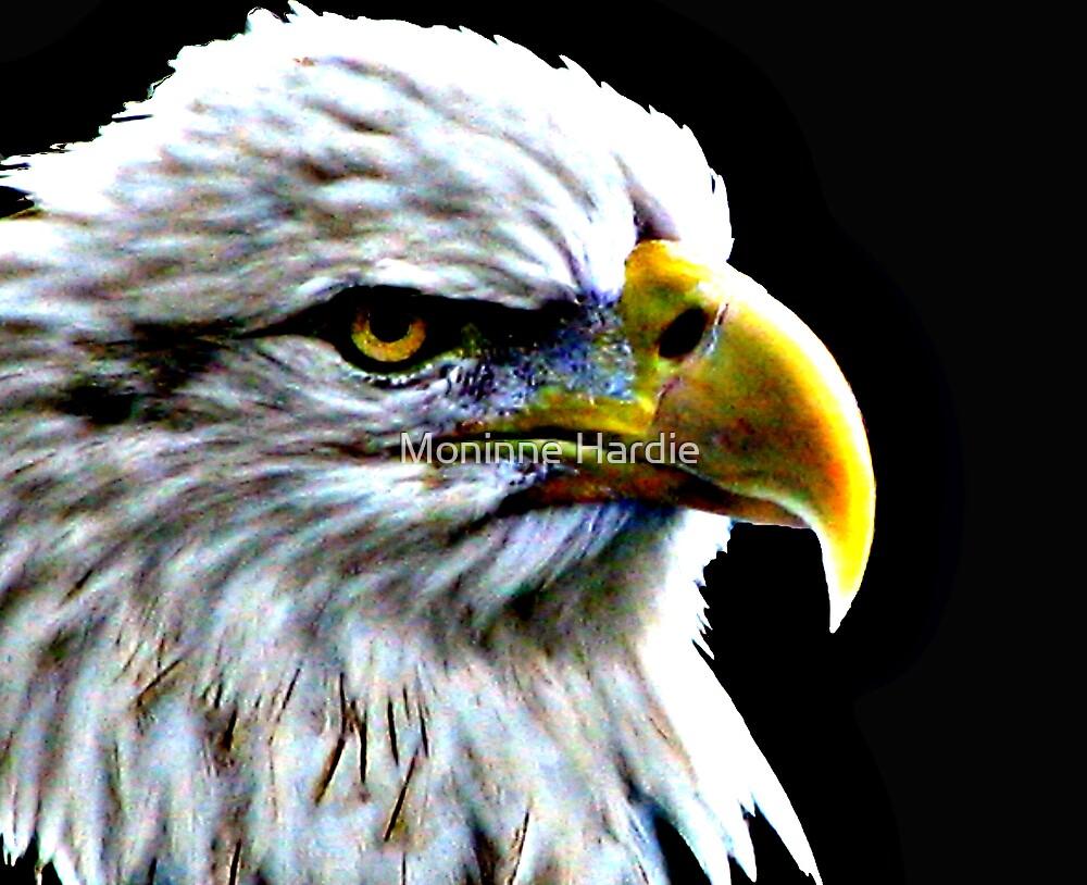 Eagle by Moninne Hardie