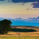 Colorado Front Range At Sunrise by John  De Bord Photography