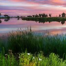 Colors Of A July Sunrise by John  De Bord Photography