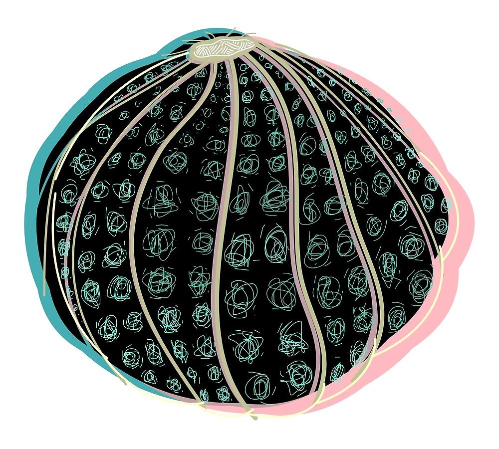 sea urchin by chyworks