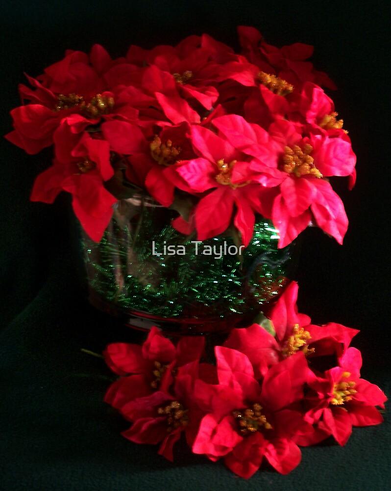 Poinsettia Christmas Card by Lisa Taylor