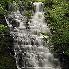 Waverly Glenn Waterfalls by BigD