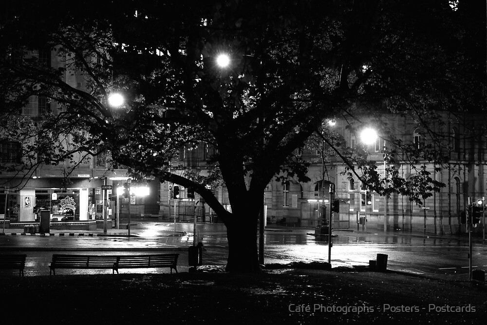 Street and Tree at Night by Cafe Photographs - Posters - Postcards