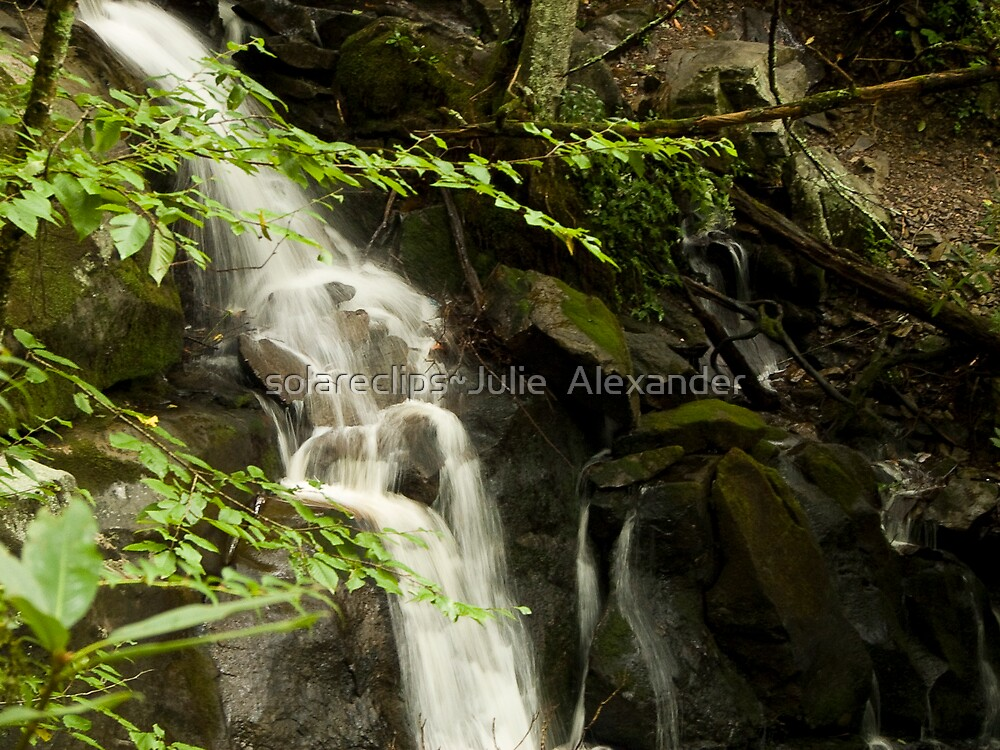 Guess what?  More Laurel Falls!! by solareclips~Julie  Alexander