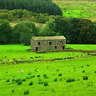 Dales Barns #2 by Trevor Kersley