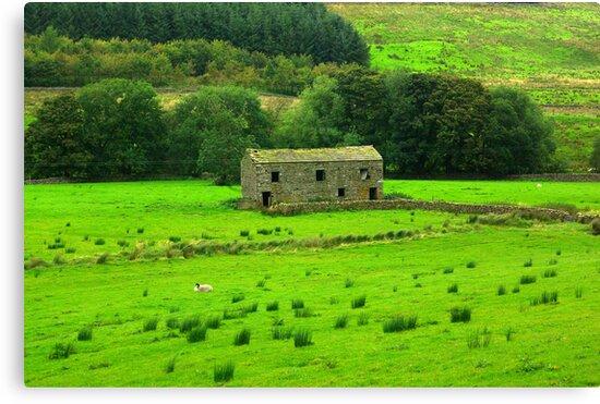 Dales Barns #2 by Trevor Kersley