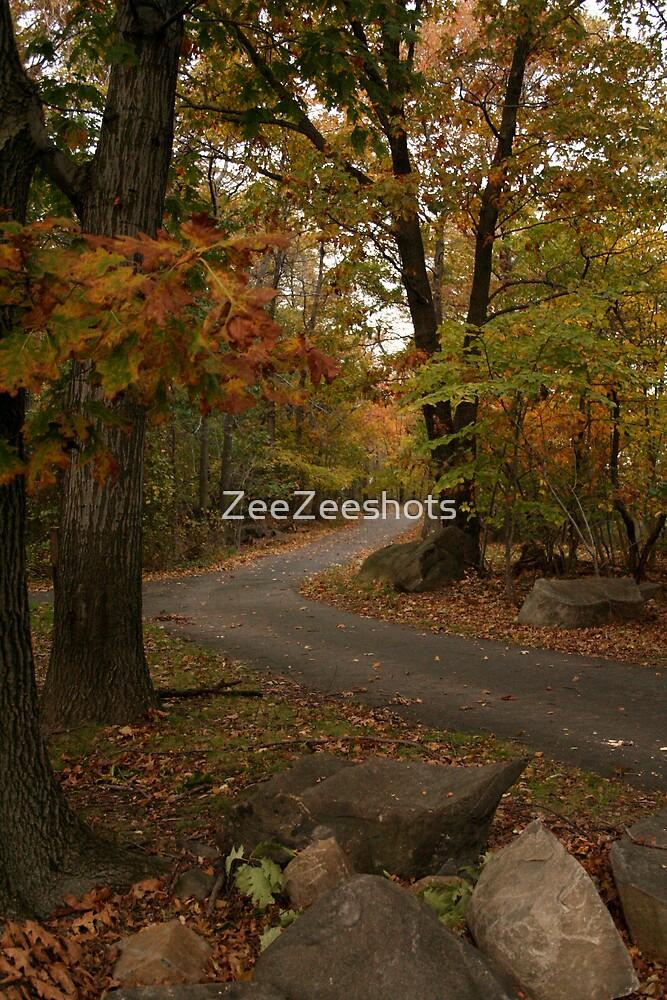The Road of tomorrow by ZeeZeeshots