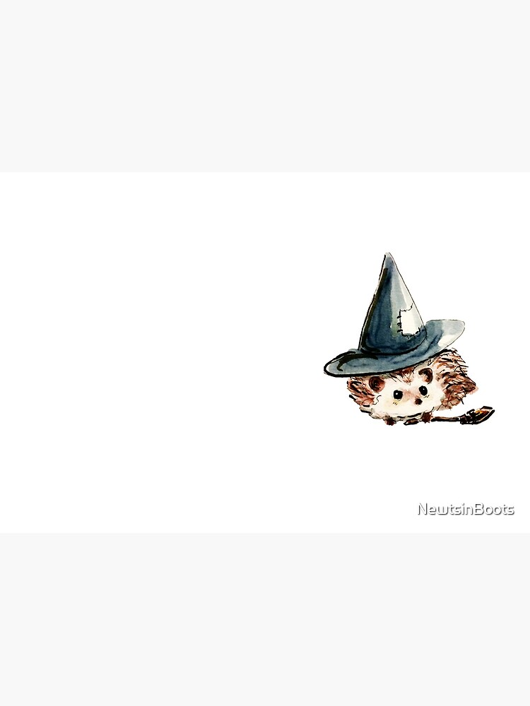Hedgehog Witch by NewtsinBoots