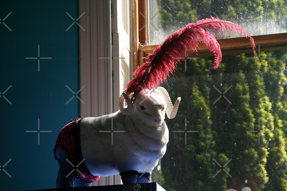Mutton Dressed as... by Louise Green