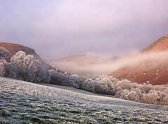 Valley in Mid Wales Frosty by goldenginger
