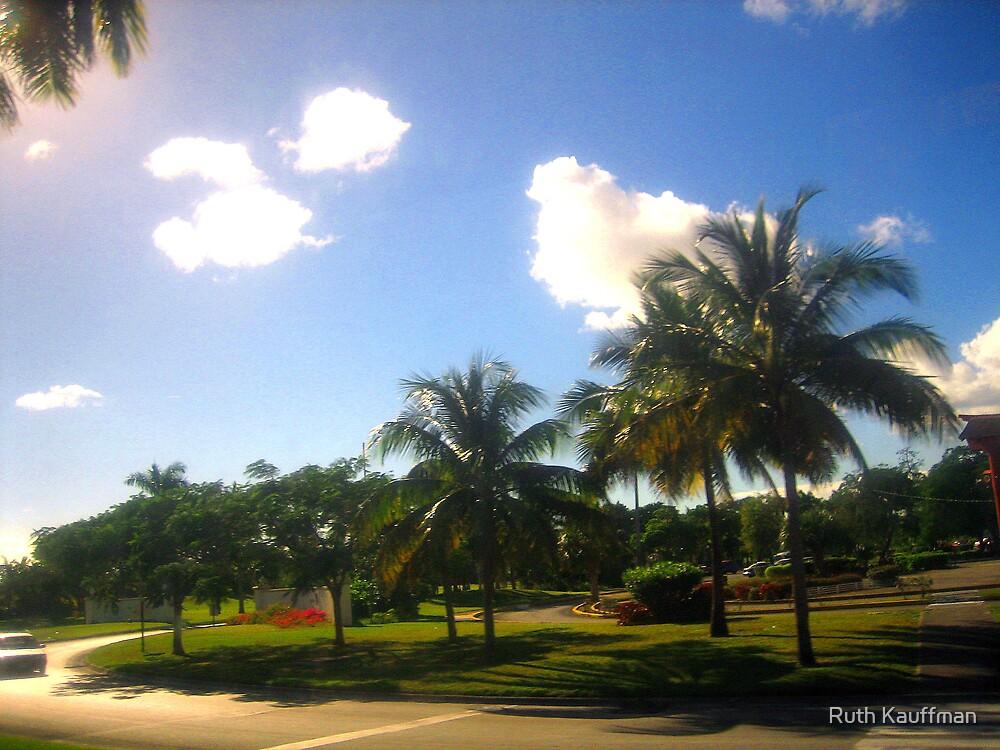 Island in Bahamas by Ruth Kauffman