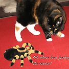 Feeding the Spider by gheather21