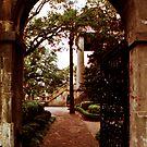 Randolph Hall Gate View by Benjamin Padgett