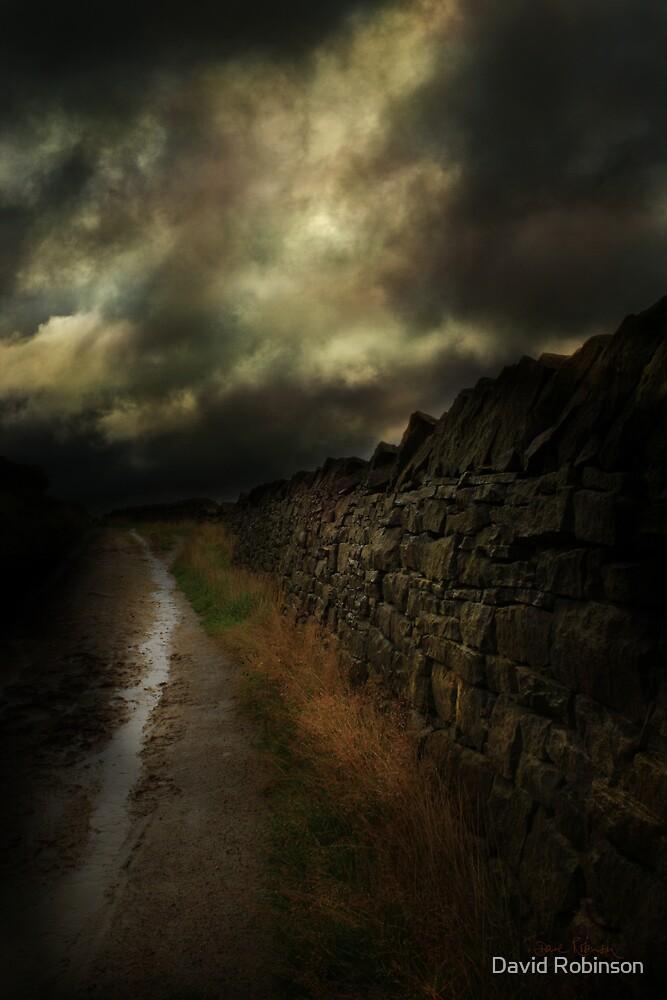 The path by David Robinson