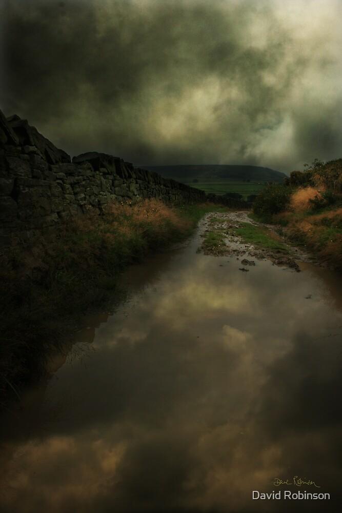 Reflections by David Robinson